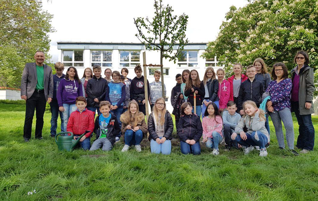 Die Schöpfung bewahren – EBG Schülerinnen und Schüler pflanzen Bäume